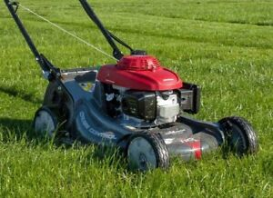 Cash paid for lawnmowers