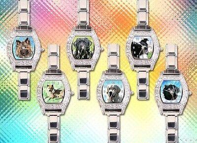 Proficoins Münzen Uhren und Schmuck