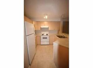 1 Bedroom and Den, 1 Bath 915 SF Temporary Rental 3 months*