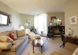 1 bedroom apartment for rent in St. Thomas! London Ontario image 2
