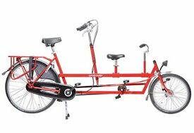Adult/ child tandem - Onderwater Transporter (red)