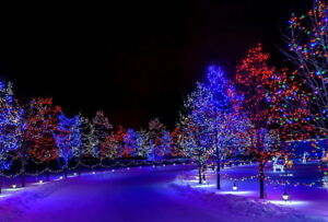 Christmas Light Set Up