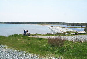 Cow bay waterfront lots