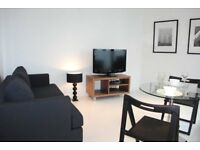 Studio apartment available in Heart of Canary wharf E14, South Quay, Isle of Dogs-TG