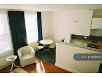 1 bedroom flat in Battersea Park Road, London, SW11 (1 bed) (#988948)