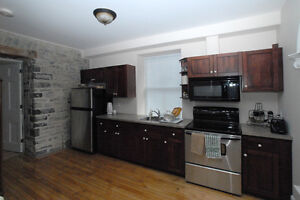 DOWNTOWN 2 BEDROOM APT - 10 MINUTES TO HOSPITALS/CAMPUS