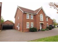 1 flatmate required for a stunning 5 bed detached house in Reading (470 pcm)