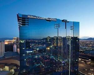 ELARA, a Hilton Grand Vacations Club @ LAS VEGAS !!!