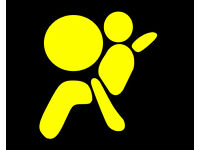 Airbag ECU Crash Data Reset Service