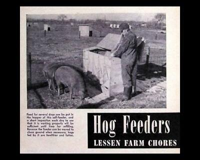 Automatic Hog Feeder Howto Build Plans 30-40 Hogs Swine