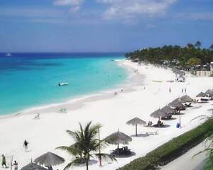 Aruba Dec 25th to Jan 1st Divi Village Golf & Beach Resort