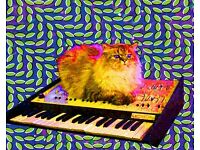 Synth/Keyboard player wanted for prog rock/psychedelic band!!!