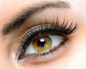 Eyelashes extensions $60 full set. Eyebrows $5  Cambridge Kitchener Area image 4