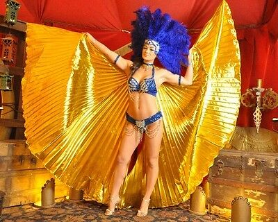 EGYPTIAN GODDESS Isis LAS VEGAS SHOWGIRL DANCER Gold Fabric  WINGS COSTUME New - Gold Wings Costume