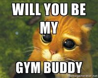 Looking for a gym partner