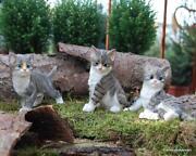 Tierfiguren Katze