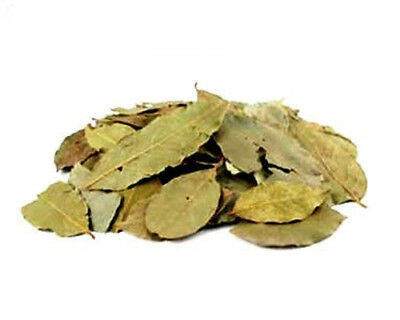 Natural 1 Lb Whole Bay Laurel Leaves  Laurus Nobilis  Herbal Health Ritual Magic