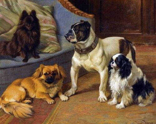 c1900~Barker~Schipperke~Pekingese~English Bulldog~Cavalier Dogs~NEW Note Cards
