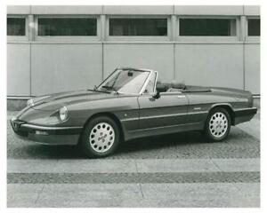 Alfa Romeo Spider EBay - Alfa romeo spider 1974 for sale