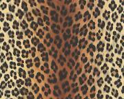 Leoparden Tapete