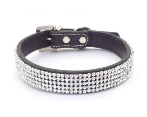 Bling Cat Collar Ebay