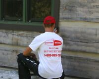 Work Outdoors and Earn Great Wages - Become A Student Painter!