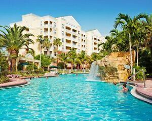 Weston (Fl, 15min. Fort Lauderdale) condo 4pl. 6 au 13 juillet