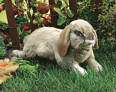 HOLLAND LOP RABBIT Puppet # 2892 ~ FREE SHIPPING in USA! Folkmanis Puppets