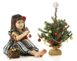 CHRISTMAS TREES FOR SALE. &.DELIVERY North Shore Greater Vancouver Area image 9