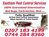 Eastham Pest Control Services - 100% Guarantee - Bed Bugs | Cockroaches | Mice | Ants | East Ham