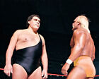 Andre the Giant Wrestling Photos