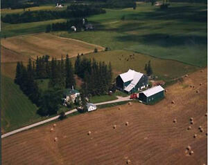 Farm/Commercial Property