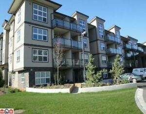 $85 / 1br - 700ft2 -The Best Furnished Suites In Abbotsford (TC