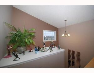 BRIGHT MODERN BASEMENT SUITE 4 RENT DEC. 1 Edmonton Edmonton Area image 4