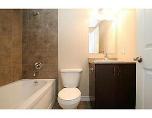 Stanley Park 2 Bedroom Townhouse Condo for Rent-Avail.2017/01/01 Kitchener / Waterloo Kitchener Area image 8