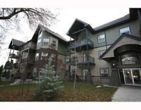 Cozy 2 bed 2 bath Newer condo near Whyte and 99ST