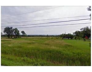 AMAZING 103 Acres of Mixed land, ready to develop! $500K