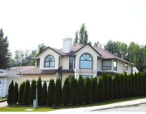 Spacious Executive Home in Upper College Heights for Rent