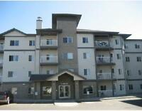 1 Bedroom furnished apt with 2 underground stall & utilities