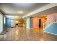 1 bedroom large walkout basement apartment for rent