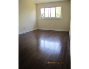 SPACIOUS ONE BEDROOM WITH LARGE CLOSET - AVAILABLE MAY 1