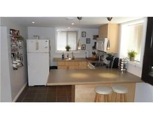 1BR APT - FULLY FURNISHED - UTILITIES INCLUDED