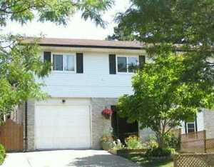 22 Valleyview rd Kitchener (near Sunrise) for Rent $1400