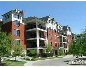 Beautiful 2bedroom 2 bath condo in the River Valley!