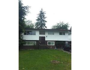 3 Bedrooms, Rent with Option to Buy (Coquitlam)