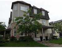 Beautiful 3 BDR Townhouse, Stittsville - $1,600/month