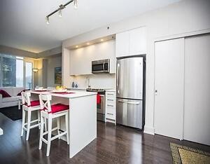 BEAUTIFUL FULLY FURNISHED 1 BED IN WESTBORO AVAIL DEC 1st