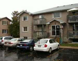 Great 2 bedroom apartment Available January 1st!!!!! Kitchener / Waterloo Kitchener Area image 1