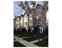2 bedroom + Den townhome in Port Coquitlam