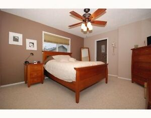 BRIGHT MODERN BASEMENT SUITE 4 RENT DEC. 1 Edmonton Edmonton Area image 2